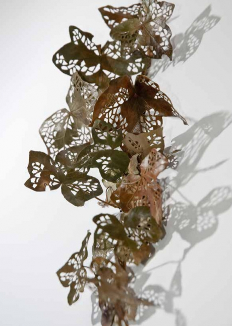 Elisabetta Di Maggio_Hedera helix branches stabilized and hand-cut with scalpel